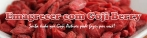 Goji Berry - Kit (fruta+caps) para 1 mês