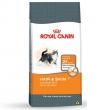 Ração Royal Canin Hair e Skin para Gatos Adultos - 1,5 Kg