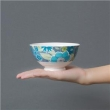 Bowl Estampado - Floral FY002 7118154