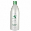 Shampoo Lanza Kb2 Keratin Bond Protein Plus 1000Ml