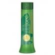 Shampoo Pós - Química Bananeira Haskell - Shampoo Reconstrutor - 300ml