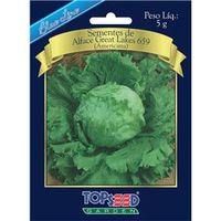 Sementes De Alface Great Lakes 659 ( Americana ) - Topseed Blue Line