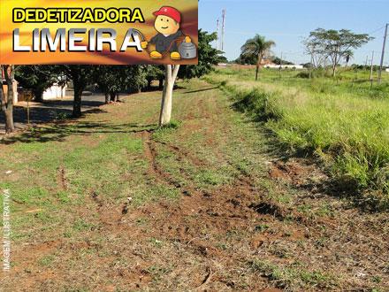 O mato cresceu? Limpeza de Terrenos de até 500m² na Dedetizadora Limeira a partir de 99,00.