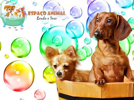 Banho + Tosa Higiênica + Limpeza de Ouvidos + Corte de Unhas no Espaço Animal, por 14,90. Atendimento imediato!