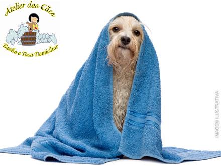 Banho + Corte de Unhas + Limpeza de Ouvidos + Tosa Higiênica ou da Raça + Hidratação no Atelier dos Cães, por 10,00.