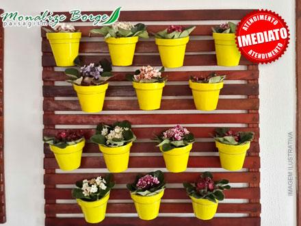 Treliça de Madeira com 10 Vasos Coloridos + 10 Mudas de Dinheiro em Penca na Monalize Borges Paisagismo, por 99,00.