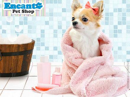 Pague 1,99 e tenha 50% OFF em Serviços de Banho e/ou Hidratação + 15% OFF em Qualquer produto da Loja, no Encanto Pet Shop!