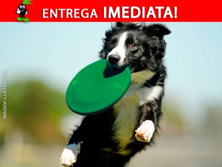 Diversão de sobra para cão! Frisbee Dog, por apenas 35,90. Frete Incluso para todo o Brasil!